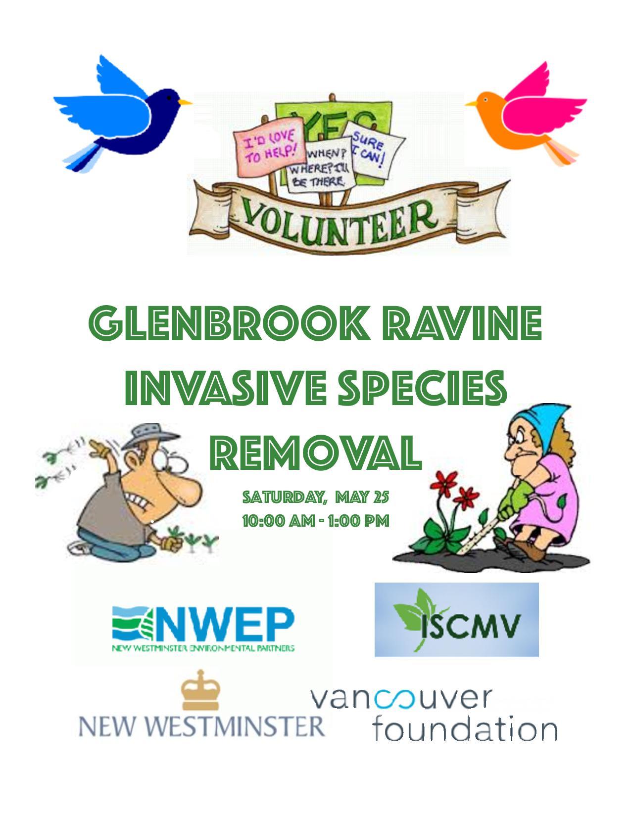 Glenbrook Ravine Weed Pull - May photo