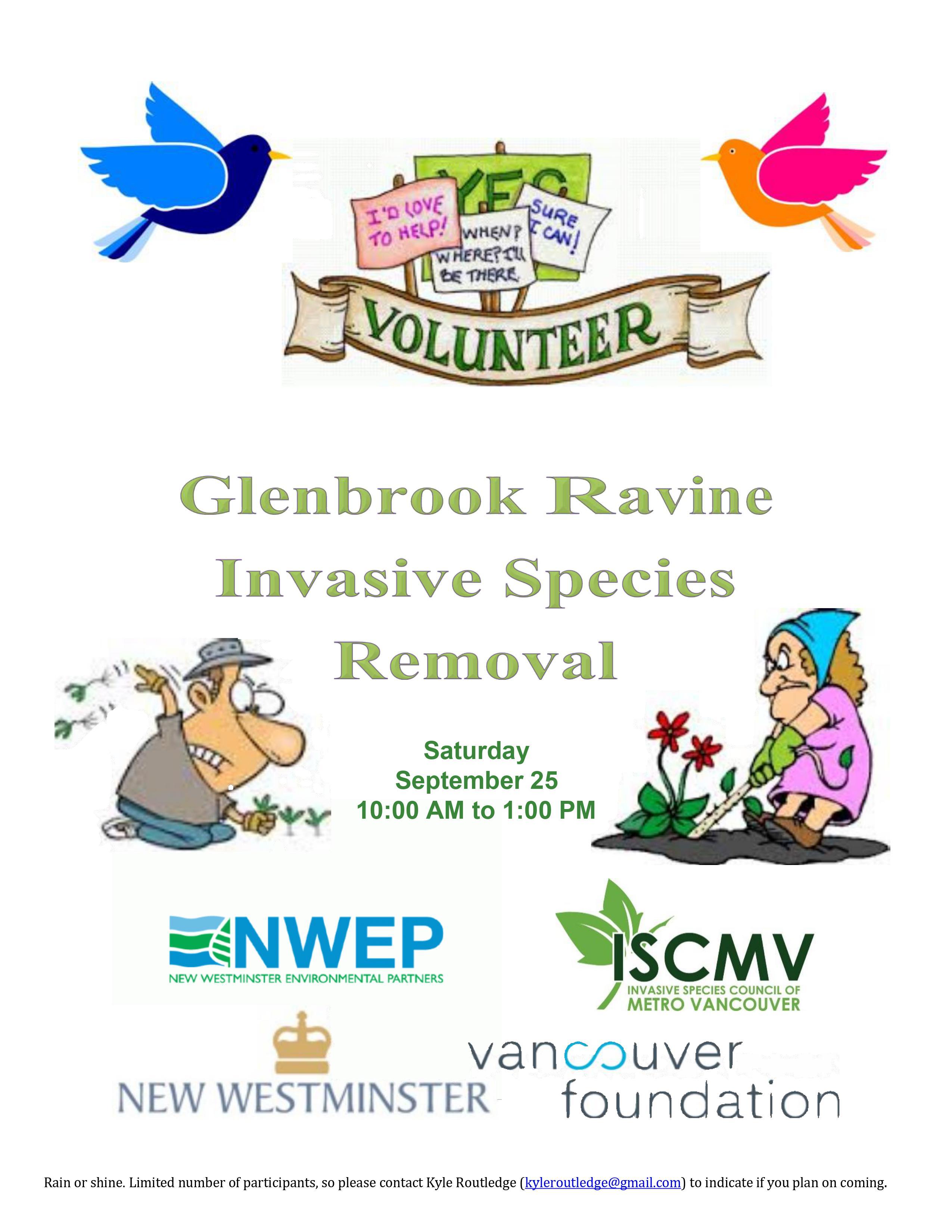 Glenbrook Ravine Weed Pull - September 2021 photo