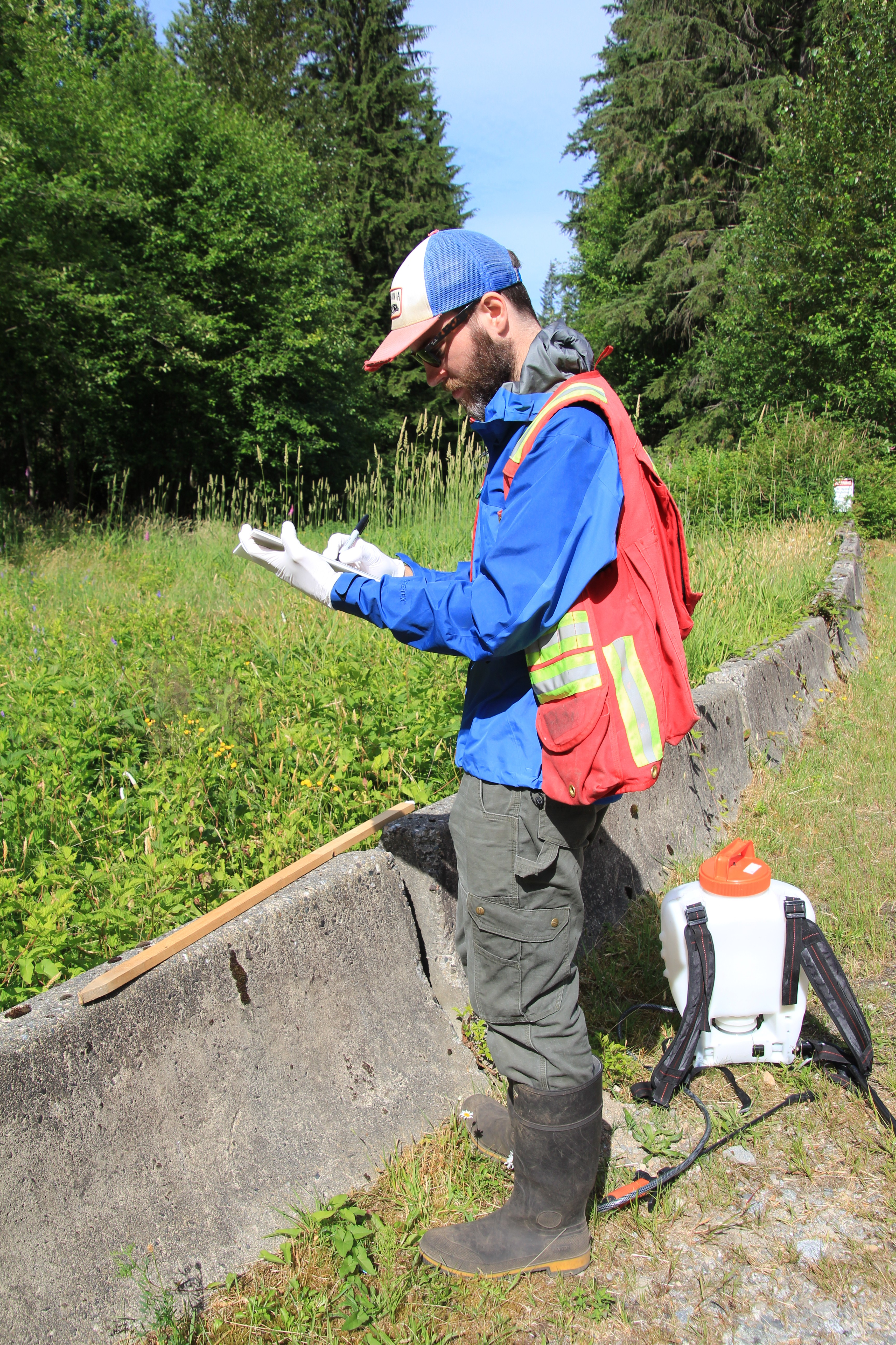 MOTI Invasive Plant Webinar 2021 photo