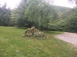 Glenbrook Ravine Weed Pull - September 2019 photo