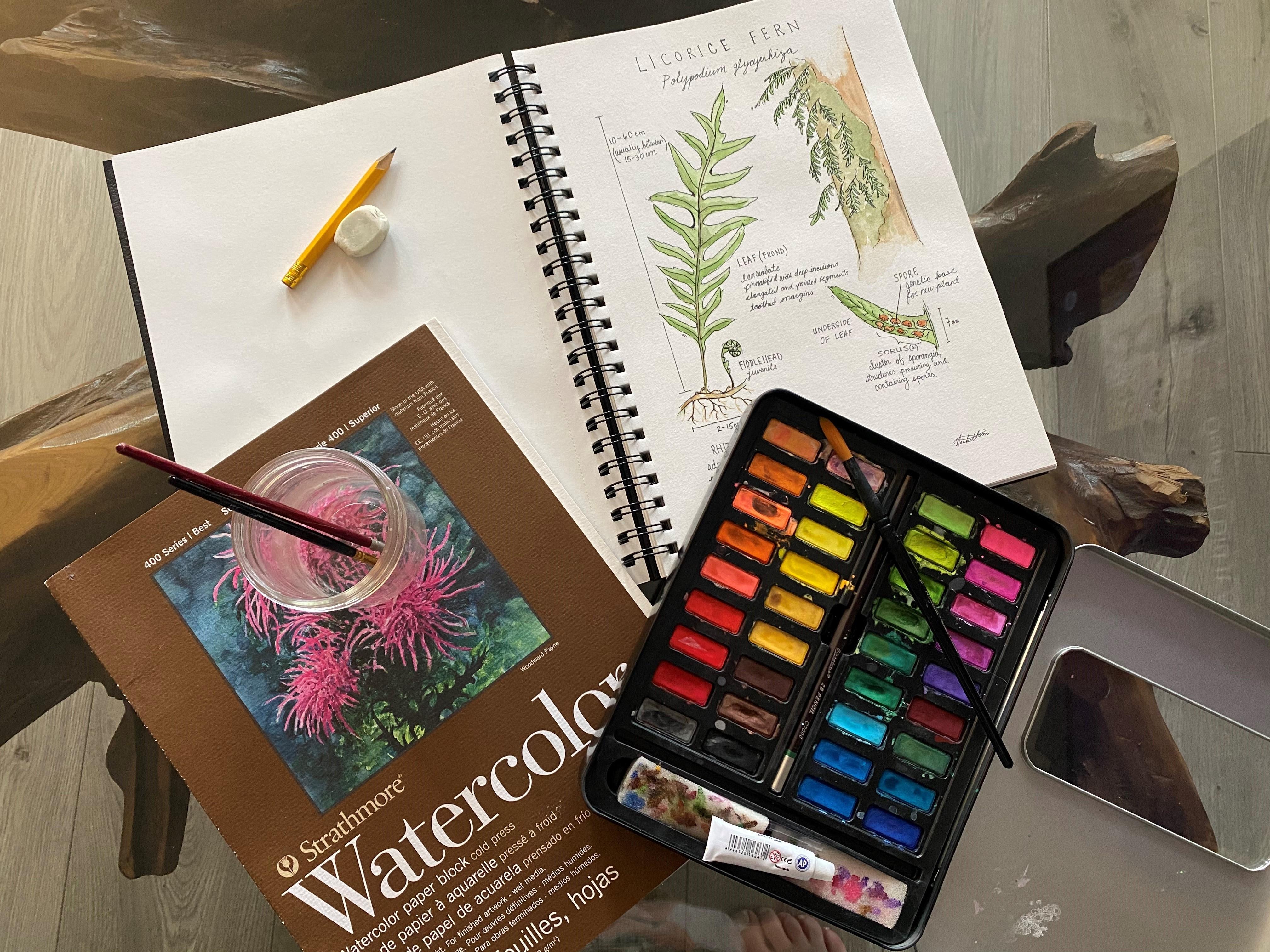 Community Art Workshop #3: Botanical Illustration photo